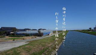 umedagawa111.jpg