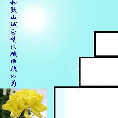 wakayamaaa11.jpg