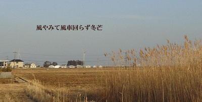 windener123.jpg