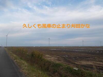 windstop111.jpg