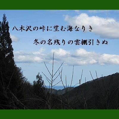 yagitanji11.jpg