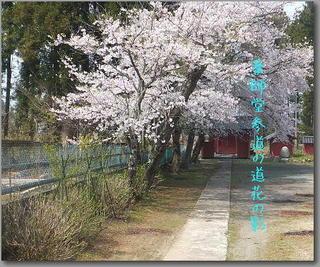 yakushi1111111.jpg