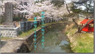 yakushi2222222.jpg