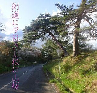 yakushiii1222.jpg