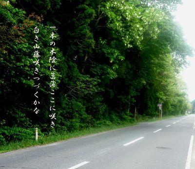 yamafujiiiii1234566.jpg