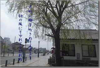 yanagitamachiii111.jpg