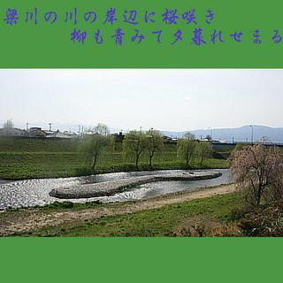 yanagwasakuea111.jpg