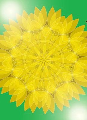 yellowfff5.jpg