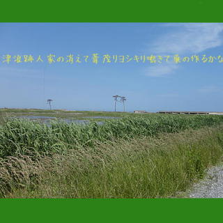 yoshjara1.jpg