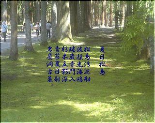 zuigannjiiii1111.jpg
