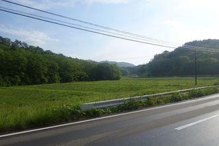 ashiharaaaa11.jpg
