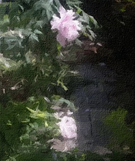 botanchiru_FotoSketcher2.jpg