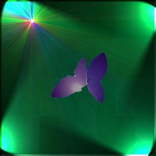butterflyssssss1111122222.jpg