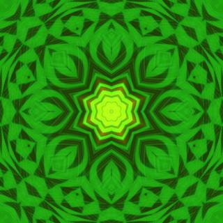 leavessss123.jpg
