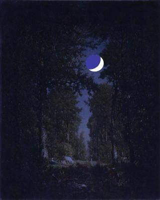 moonforesttt11.jpg