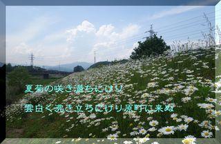 natugikuharamachiii1.jpg