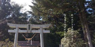 ninomiyameeee111.jpg