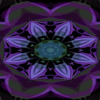 perpleflower11.jpg