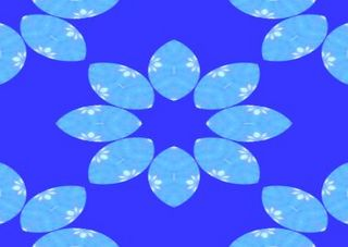 seafishabbb33333444445555.jpg
