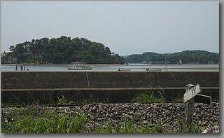 shimaoku1234.jpg