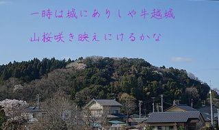 ushigoeeee12344.jpg