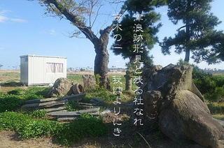 yashiroooo111.jpg