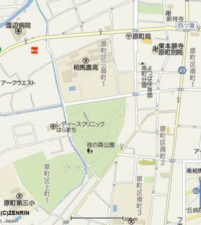 yonomoriii123.jpg
